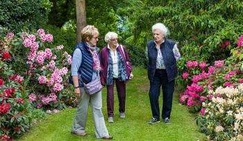 Clive gardens 1
